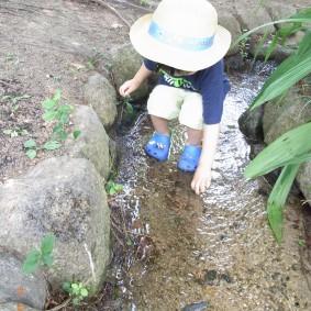 井戸水の川〜水が冷たい!